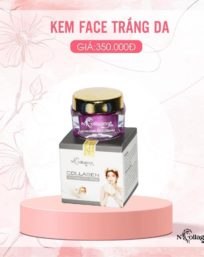 kem face tím N-collagen